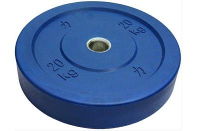 Blue Riot Bumper Plate 20 kg