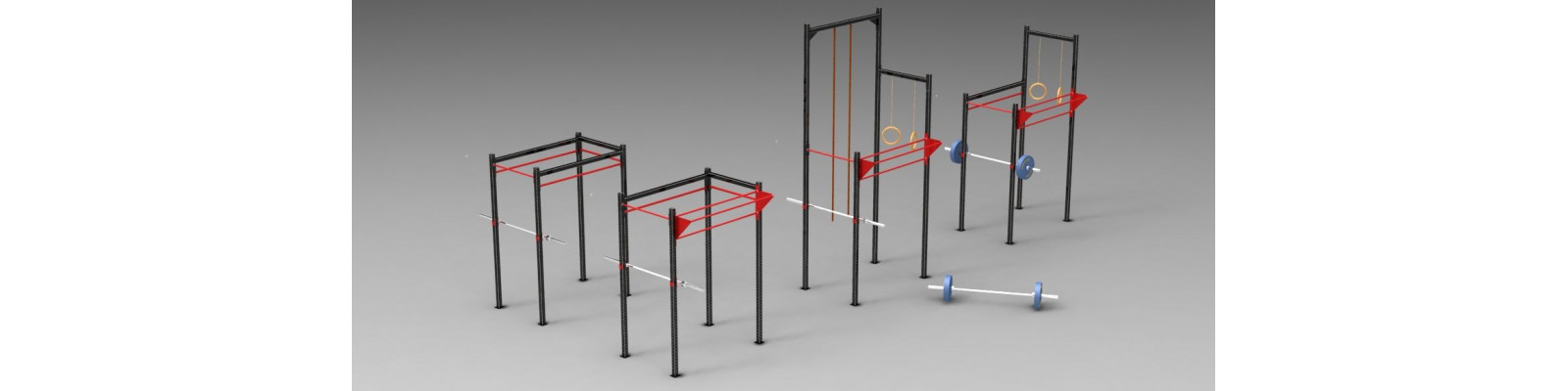 Cross fit rigs for Home Use
