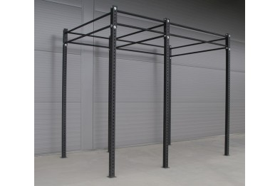 Detached Crossfit Rig with Squatstation